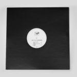 "butterfly shreds vinyl 12"" _1"