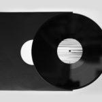 "butterfly shreds vinyl 12"" _2"